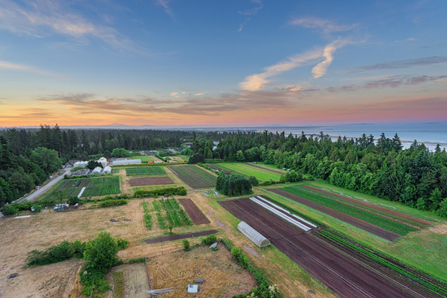 SUNSET OVER UBC FARM